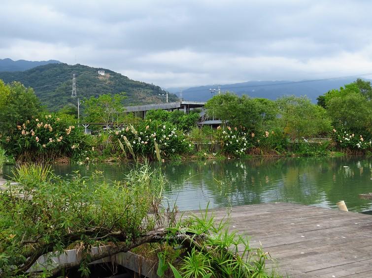 勝洋水草休閒農場 (24)