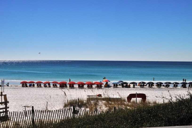 A View as Delicious as My Grouper Sandwich, Elephant Walk