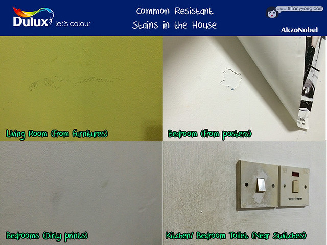 Dulux Common Stains