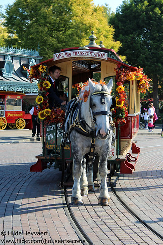 Horse drawn street car goes Halloween