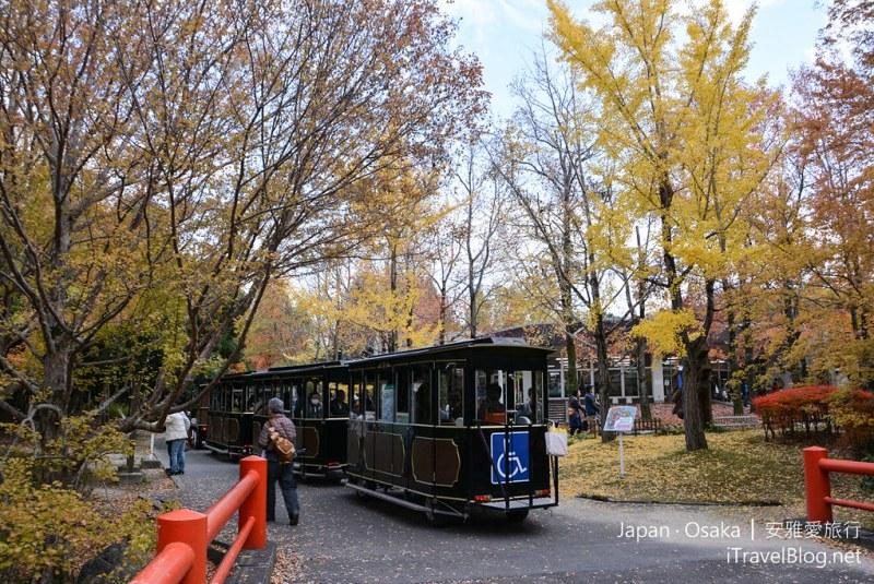 大阪赏枫 万博纪念公园 红叶庭园 03