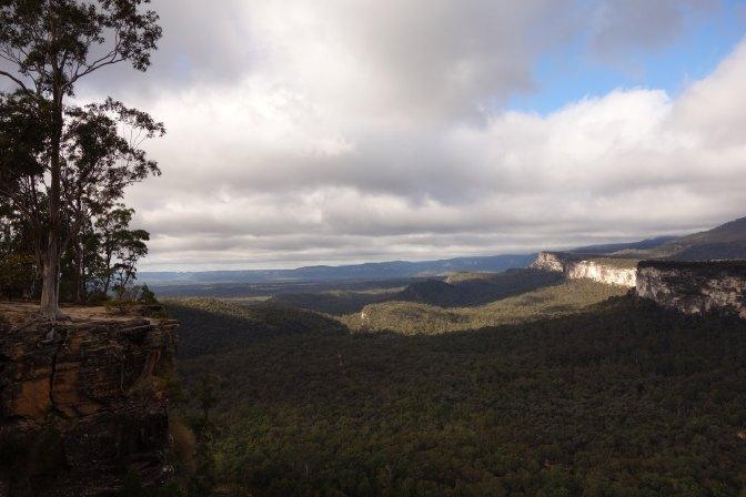 Carnarvon Gorge - Boolimba Bluff