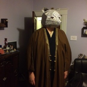 Bear mask and costume