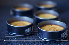 almond cakes, baked and cooling