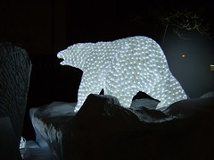 2010 VANCOUVER WINTER OLYMPIC GAMES | POLAR BEAR 3