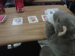 Puppet mouse playing poker