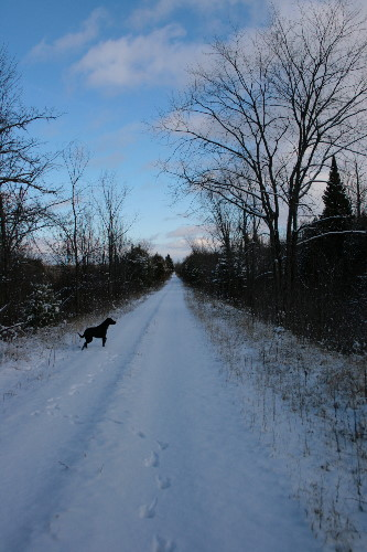 Old Ontario & Quebec Railway (CPR) rail trail