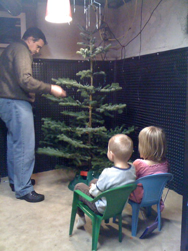 Christmas Tree Decorating: Spectator Sport?