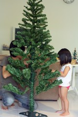 decorating the xmas tree