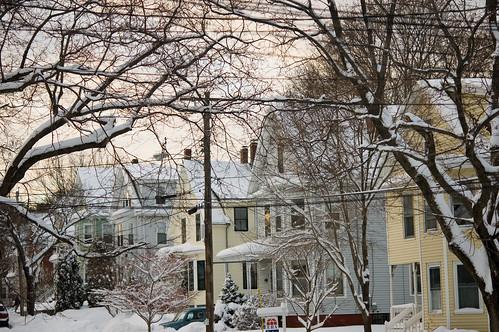 snowy day! (by bookgrl)