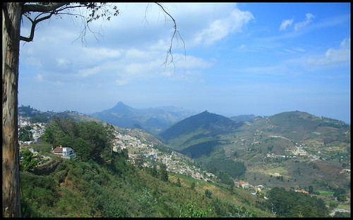 Kodai View