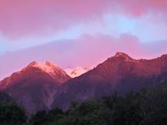 Alpengluehen Fox Glacier