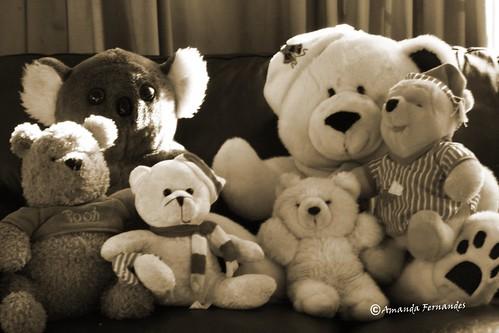 365-20 If we were bears?
