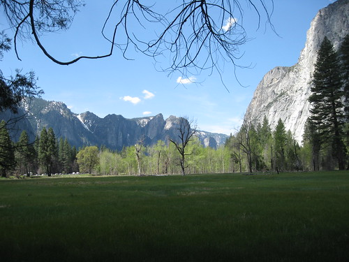 Meadow and Canyon