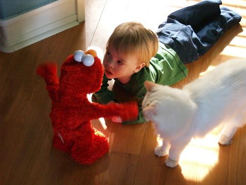 Atti, Gizmo, and Elmo