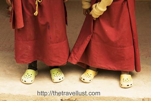 Crocs Shoes!