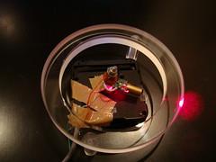 looplines prototype