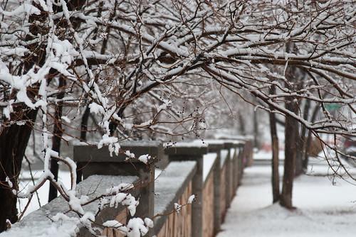 Snow Along Wall