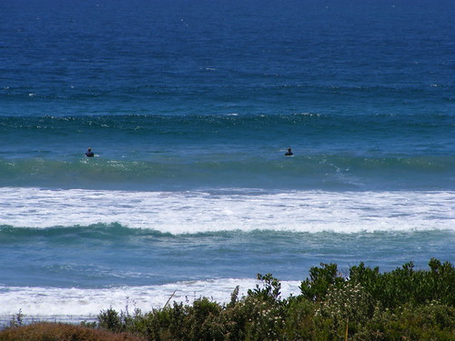 Eaglehawk Neck Surfers