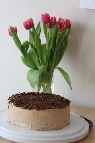 YIP 365.279: a piece of cake