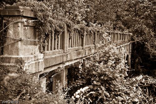 MMX 146 Bridge