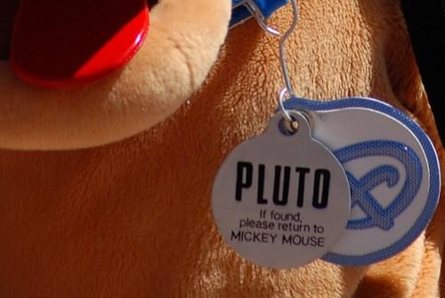 Pluto dog tag