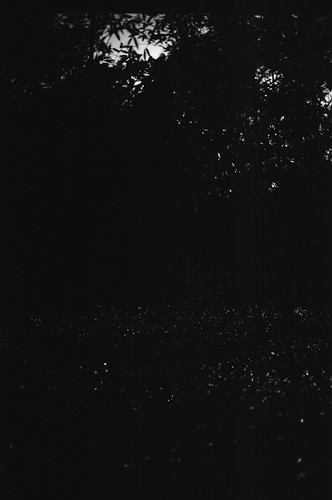 50 mm, f/1.4, 120