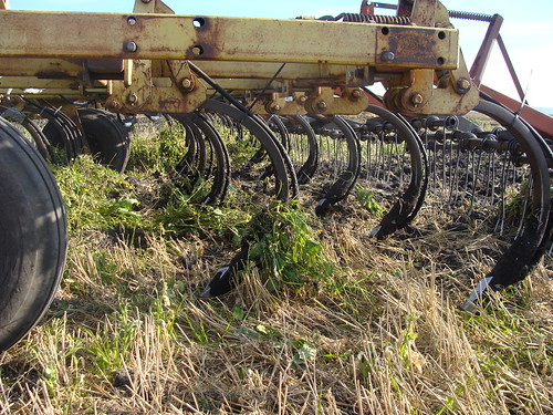 Cultivator Frame, Shanks and Openers