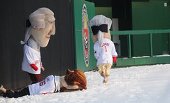 Washington Nationals Presidents Race Auditions
