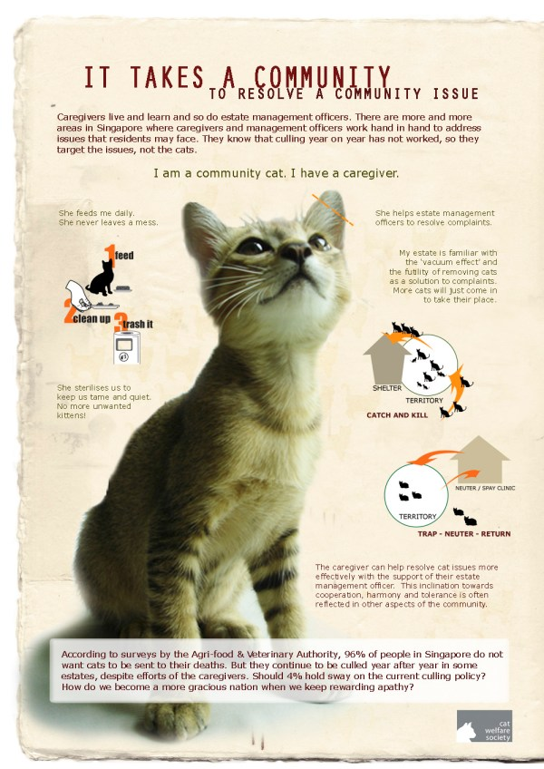Education Resources Cat Welfare Society