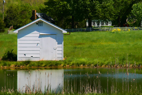 The Farm Pond and Shed