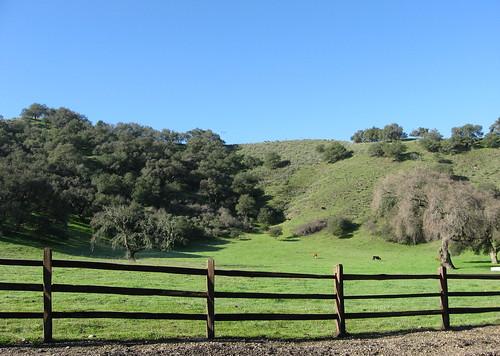 Green pastures of Santa Maria