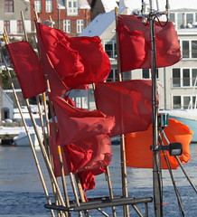Feb 11/2010 Fishing flags