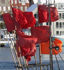 Feb 11/2010 Fishing flags