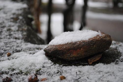 Snow on a Rock