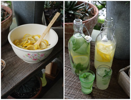 Homemade Herbal Lemonade