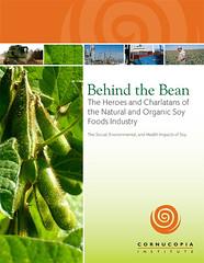 Behind the Bean