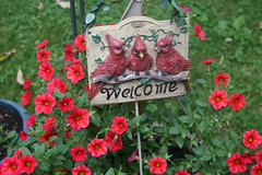Welcome Cardinal Sign