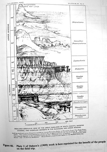 Defunct but Useful Stratigraphy