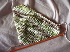 boring washcloth wip (by dyedinthewool)