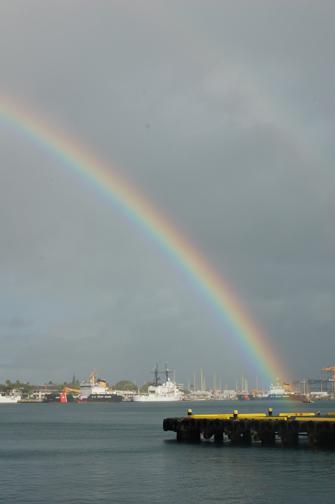 harbor rainbow
