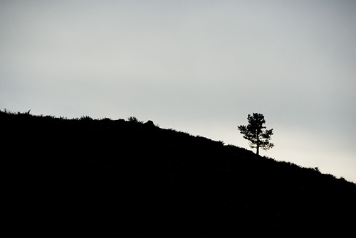 silhouette on Patterson Mountain