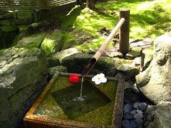 Japenese Fountain