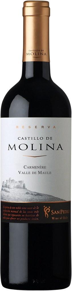 Castillo de Molina Reserva Carmenere