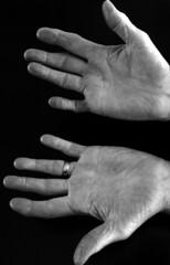 """""""Viking"""" Hands"""