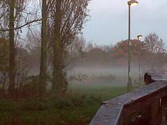 Layer of mist