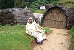 Nilgiris -  Mullimunth Toda grandmothers