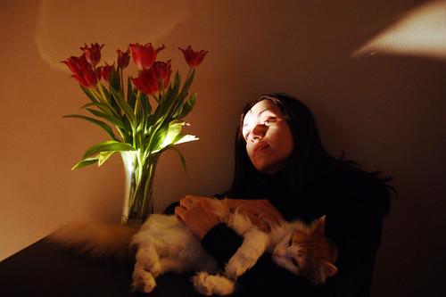 Tulips, Cat, Girl by alubavin, on Flickr