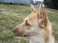 Savannah's profile
