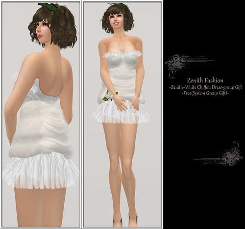 100423 zenith Fashion